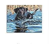 Yzrh Schwarzer Hund in Wasser DIY Malen nach Zahlen Kits Zeichnung Malen nach Zahlen Malen auf Leinwand für Raum Artwork