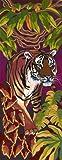 Tiger - Malen nach Zahlen - Long Style