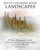 Adult Coloring Book Landscapes: A Stress Management Adult Coloring Book of Landscapes from Around the World (Advanced Realistic Coloring Books, Band 8)
