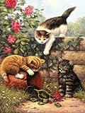 Royal & Langnickel PJS52 - Malen nach Zahlen Din A4 - Spielende Kätzchen