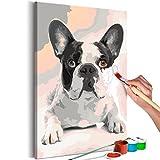murando - Malen nach Zahlen Hund Bulldog 40x60cm Malset DIY n-A-0195-d-a
