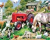 Suubboo Rahmenlose DIY Malen Nach Zahlen Ölfarbe Wandkunst Bilder Dekor Für Heimtextilien Bauernhof Geflügel 40X50Cm