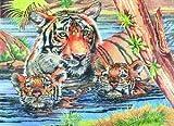 Tigerfamilie - Malen nach Zahlen mit Buntstiften - Mammut