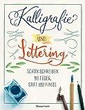 Kalligrafie und Lettering. Schön schreiben mit Feder, Stift und Pinsel.: 12 Alphabete, mit Übungsseiten. Ideal für Bullet Journal, Diaries, ... Einladungskarten, Tischkarten, Menükarten
