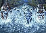 Royal & Langnickel 28x38cm vorgedruckte Farbe mit drei Tigern als Motiv, Malen nach Zahlen-Malset.