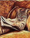 Katze Tiere DIY Malen Nach Zahlen Rahmenlos DIY öLgemäLde für Erwachsene Malen Auf Leinwand