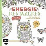Energie des Waldes: 100 vitalisierende Motive zum Ausmalen - Farbe rein, Stress raus