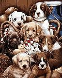 CaptainCrafts New Malen Nach Zahlen 16x20 für Erwachsene, K0inder Leinwand - Eine Gruppe von Hunden (mit Rahmen)