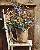 CaptainCrafts New Malen Nach Zahlen 16x20 für Erwachsene, K0inder Leinwand - Wilde Blumen Töpfe Stuhl (mit Rahmen)