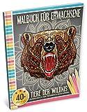 Malbuch für Erwachsene: Tiere der Wildnis (Kleestern, A4 Format, 40+ Motive) (A4 Malbuch für Erwachsene)
