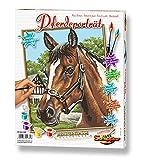 Schipper 609240381 - Malen nach Zahlen - Pferdeportrait - Bilder malen für Erwachsene, inklusive Pinsel und Acrylfarben, 24 x 30 cm