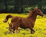 YEESAM ART Neuheiten Malen nach Zahlen Erwachsene Kinder, Wiese Pferd Kind 40x50 cm Leinen Segeltuch, DIY ölgemälde Weihnachten Geschenke