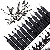 12 Fineliner stifte Set, Schwarz Filzstiften, Pigment Liner set, wasserfest, Stifte für Künstler, Illustration, Skizzen, technisches Zeichnen, 902195