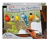 REEVES Malen nach Zahlen ' Artist Collection ' für Erwachsene, 30x40cm, 20 Farben, Motiv - Vögel Balken