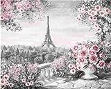 WFYY DIY Malen Nach Zahlen Bauwerk des Grauen Eiffelturms Malen Nach Zahlen Malset Mit Leinwand Für Erwachsene Kinder Gemälde Handgemalt Kit Geschenk Dekoration