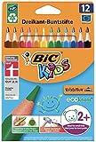 BIC Kids Buntstifte ECOlutions Evolution, Ergonomische Dreikant-Malstifte zum Malen in 12 Farben, im Karton Etui, ab 2 Jahre