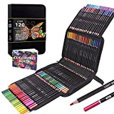 120 Buntstifte für Erwachsene Set Perfekt zum Zeichnen, Skizzieren, Schattieren und Ausmalen, lebendige Buntstifte für Erwachsene und professionelle Künstler