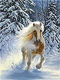 YEESAM ART Neuheiten Malen nach Zahlen Erwachsene Kinder, Pferd Tier Schnee Wald 40x50 cm Leinen Segeltuch, DIY ölgemälde Weihnachten Geschenke (Pferd, Ohne Frame)