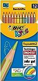 BIC Kids Buntstifte Tropicolors 2, zum Malen in 12 Farben, im Karton Etui, ab 5 Jahre, Bruchsichere Mine und ohne Holz