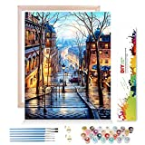 AICHUANGBAO Malen nach Zahlen Erwachsene Kinder mit Rahmen - Sonnenuntergang,DIY Handgemalt Ölgemälde Kits mit Pinsel, Acryl,Hochwertiger Farbdruck faltenfreie Leinwand 40*50CM