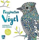 Faszination Vögel – Ausmalen und Staunen: Überraschendes Tierwissen inklusive