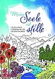 Meine Seele ist stille: Ein Malbuch für Erwachsene zu den Psalmen